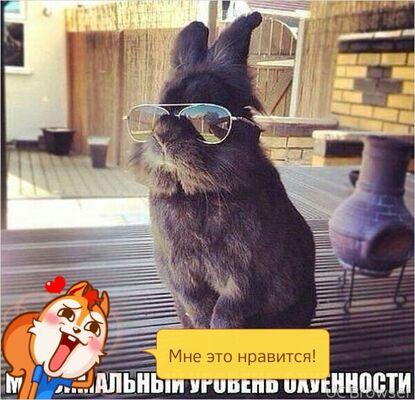 Фото мужчины Вадим, Ухта, Россия, 44