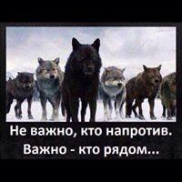 ���� ������� Vasilek, ����, �������, 18