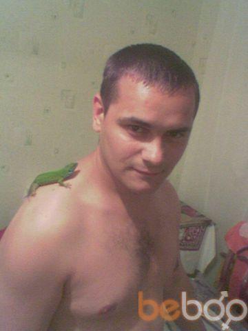 ���� ������� melkii, �������, �������, 36