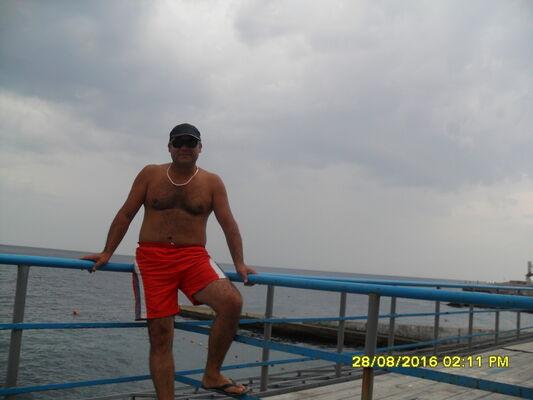 ���� ������� Alim, ����, ������, 40