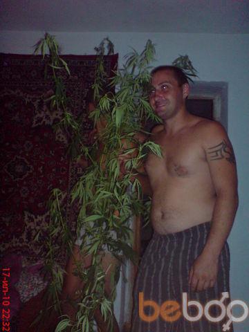 ���� ������� stepa, ���������, ������, 31
