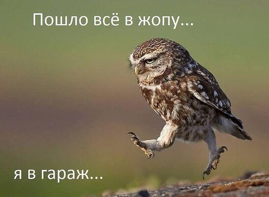 Фото мужчины Леонид, Саяногорск, Россия, 56