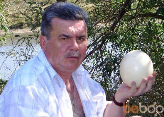 ���� ������� vicpal, ��������, �������, 62