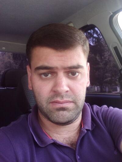 ���� ������� Krasavchik, �������, ������, 31
