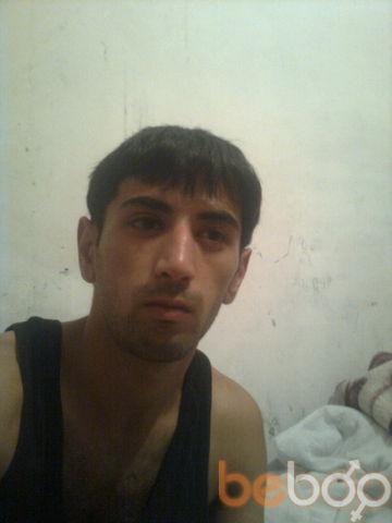 ���� ������� Qelender, �������, �����������, 29