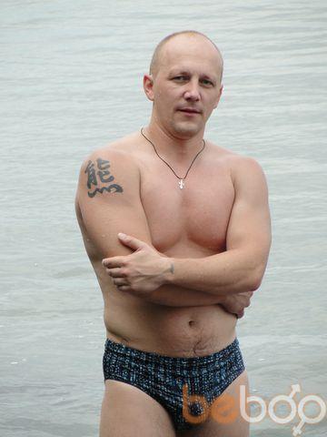 ���� ������� bliznerman, �����, ��������, 43