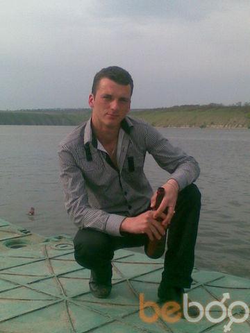 ���� ������� schyr, �����������, �������, 28