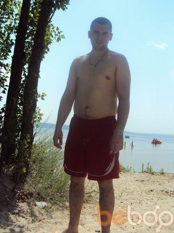 ���� ������� DOBERMAN77, ��������, �������, 34